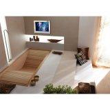 TVの浴室贅沢なデザインミラーTVを消失させる21.5インチの魔法ミラー