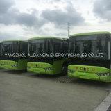 호화스러운 고품질 안전 전기 10m 버스