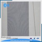 Commestibile della rete metallica dello schermo dell'acciaio inossidabile 316 degli ss 304