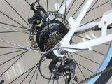 Plage de vélo électrique 36V 250W pour dame