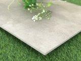 Tegel van de Vloer van het Porselein van de Stijl van de Ontwerpen van het cement de Populaire (CLT603)