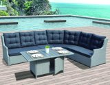Outdoor canapé en rotin patio salon Lakehouse Kd Accueil Hôtel Bureau Meubles de jardin (J649)