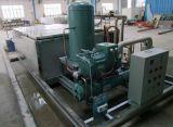 Verwendete Edelstahl-Block-Speiseeiszubereitung-Handelsmaschine im Fischmarkt