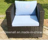 Мебель сада классицистического Wicker ротанга софы бормотушк синтетического установленная напольная