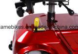 고속 성숙한 허브 모터 전기 세 배 스쿠터 자전거 핸들 발동기 달린 자전거를 위로 서 있으십시오