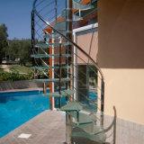 ステンレス鋼の柵が付いている現代優雅なDIYの螺旋階段/梯子
