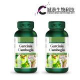 Le garcinia cambogia Extract Slimming Capsules pilule de perte de poids