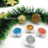 Блестящие цветные лаки Craft ПЭТ и Блестящие цветные лаки для прогулочных судов и лак для ногтей искусства