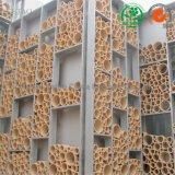 Tubo di ceramica Cina dell'allumina del tubo 99 di protezione di Termocouple