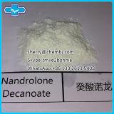 Nandrolone Decanoate Deca deca-Durabolin порошка анаболитного стероида