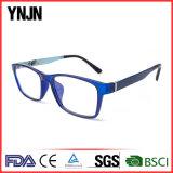 [ولّ-دسند] الصين عادة علامة تجاريّة زرقاء [إغلسّ] إطار ([يج-غ52252])