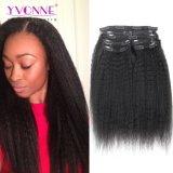 Clip diritta crespa dei capelli umani di Yvonne nelle estensioni