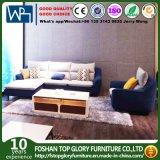 居間の家具の現代ソファー任意選択Metrial Upholstry TgS197