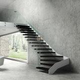 Sin cerco moderno barandilla de vidrio/Baranda escalera de escalones de madera negra