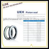 액압 실린더 피스톤 콤팩트 물개 (Ukh)