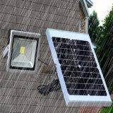 illuminazione solare del giardino della via di telecomando dell'indicatore luminoso di inondazione di 20W LED