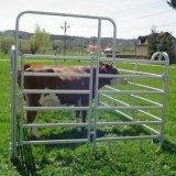 Bestiame galvanizzato resistente/Horce/rete fissa delle pecore