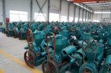 Yzyz120 Guangxin Pflanzenöl-Maschine von China