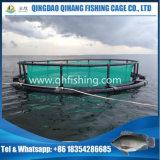 魚はのNigriaの栽培漁業タンク浮遊をおりに入れる