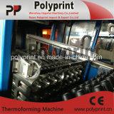 termoformadora de plástico de la Copa de inclinación automática