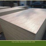 madera contrachapada comercial de la cara de 18m m Bintangor para los muebles y la decoración