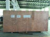 Máquina de embalagem nova da bolha de Alu Alu da máquina de empacotamento dos bens do fornecedor chinês
