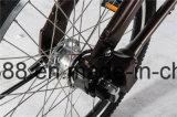 """Bike/20 """" 알루미늄 합금 Bicycle/V 브레이크 자전거 자전거를 접히는 여행"""