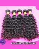 加工されていなく自然なカラーバージンの巻き毛のブラジルの毛のよこ糸