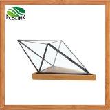유리 & 대나무 기하학적인 다즙 플랜트 남비