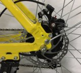 """[250و] [36ف] 20 """" يخفى بطارية منافس من الوزن الخفيف مدينة درّاجة كهربائيّة, مدينة درّاجة كهربائيّة, [إ-بيك]"""
