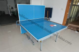Piscine Tennis de Table Table Tennis Board Set Table
