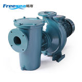 15HP Swimmingpool-Pumpen-elektrische Wasser-Pumpe
