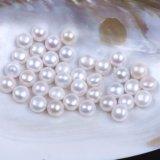 半分あけられた等級ボタンは緩く真珠に玉を付ける