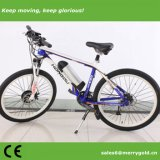 "En15194は26 "" 36V 250W電気MTBの自転車を承認した"