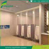 Portes phénoliques solides et écrans d'urinoir
