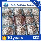 Cloro eficaz granulado 60% do engranzamento de SDIC 8-30