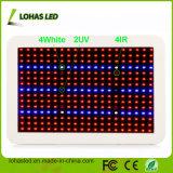 Todo o espectro do painel de LED SMD 300W 450W 600W LED hidroponia crescer Kits de luz para a fábrica