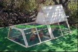 Cage de poulet (QZC8093)