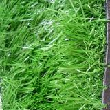 Erba artificiale naturale del tappeto erboso dell'erba ed erba di falsificazione