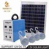 12V de la luz solar con paneles solares 20W