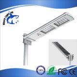 20W Luz solar calle