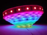 Colori di SMD5050 DC12V/24V 4 in 1 illuminazione decorativa bianca flessibile al neon della corda della striscia 155lm/W CRI>80/90 LED del LED