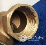 Tipo setaccio del filtro Y dal filetto avvitato bronzo d'ottone