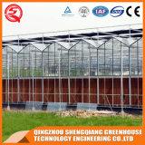 China großes Multi-Überspannung PC Quadrat-Gewächshaus für Wasserkulturbearbeitung