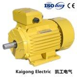 Motore asincrono asincrono elettrico a tre fasi della pompa ad acqua del ventilatore