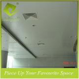 Dekoratives Innenaluminium Klipp-in der Decke beantragt Metro-Station