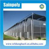 Торговая марка Sainpoly сельскохозяйственных типа PC-лист парниковых