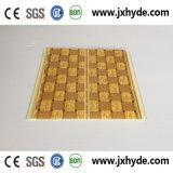 Bunte 5*200mm Belüftung-Wand-Deckenverkleidung gebildet im China-Hersteller