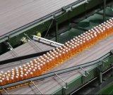 0.33L, 0,5 L, 1L'eau minérale, 1,5L plein d'usine de machines pour la ligne de production