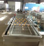 Machine de lavage automatique aux bulles à la qualité CE Machine Laveuse à légumes